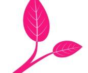 Tukea aivovammautuneen läheiselle -hankkeen logo, jossa pinkit lehdykät