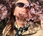 Työkokeilija Minna Eronen on kirsikankukkafestifaalissa ja tuoksuttelee kirsikankukkaa aurinkoisessa säässä.